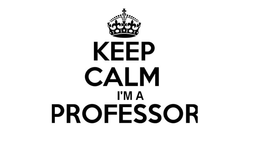 Fișa postului pentru profesor