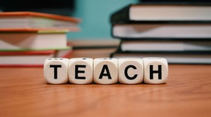 Evaluarea profesorilor – Studii OCDE