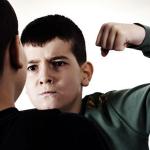 bullying elev